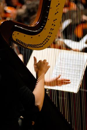 instrument cordes frappées